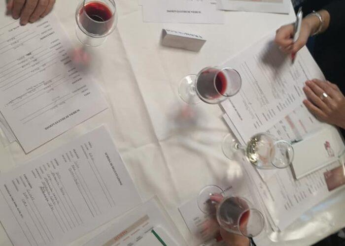 corsi connubio di vino