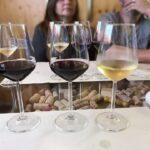 degustazioni connubio di vino